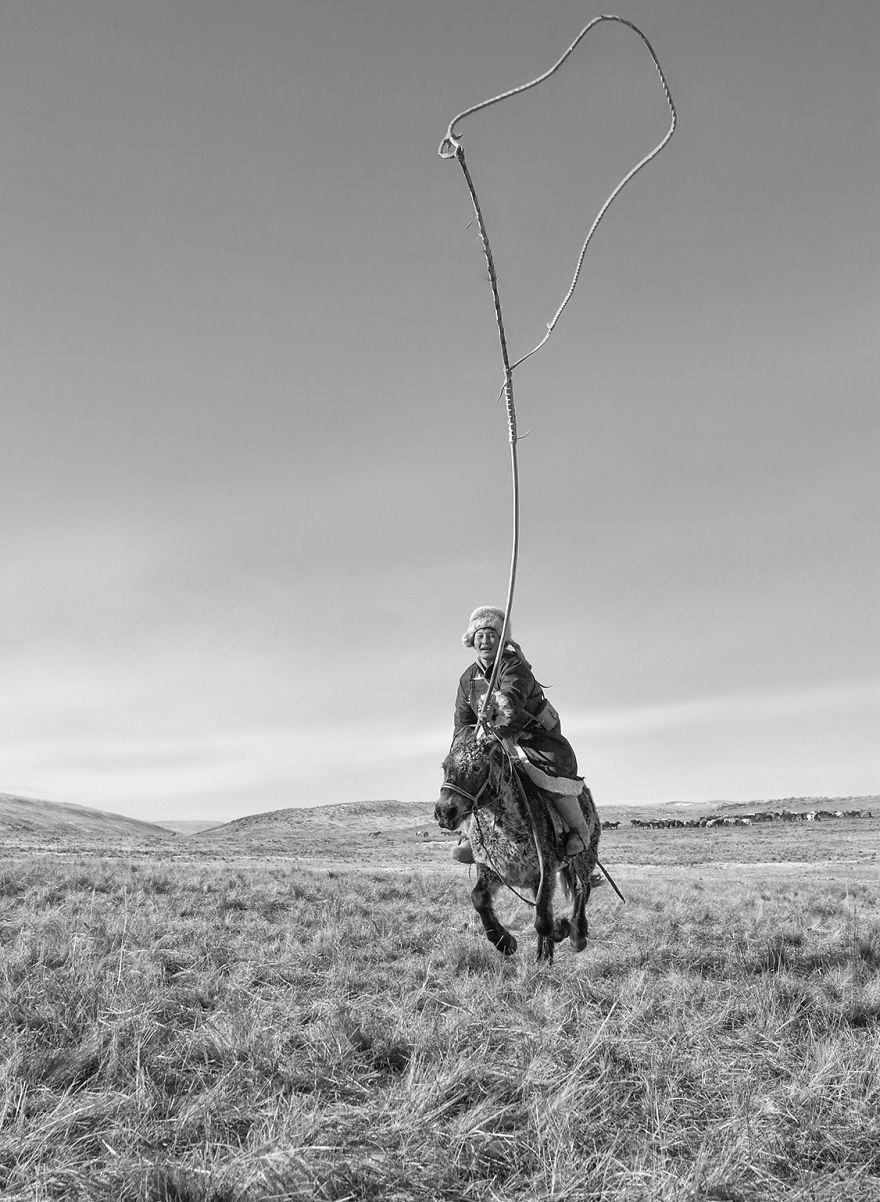 عکس/ کشوری که تعداد اسب هایش از انسان ها بیشتر است