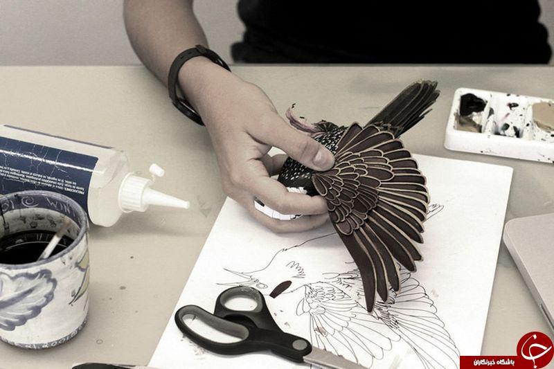 عکس/ زیباترین پرنده های کاغذی