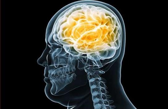 شش تاثیر مخرب چاقی بر روی مغز