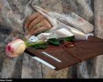 نظر استاد دانشگاه امام صادق (ع) درباره طرح قبحزدایی از تجرد دختران