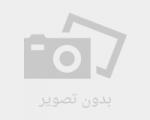 نماهنگ «اومدی» ویژه اعیاد شعبانیه تولید شد+دانلود
